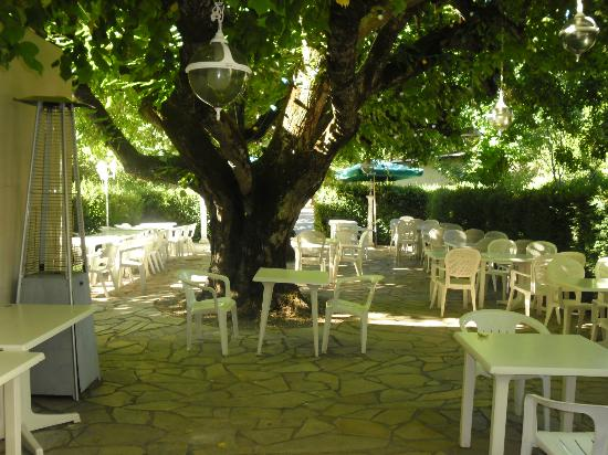 Hotel Restaurant Ma Petite Auberge: La terrase