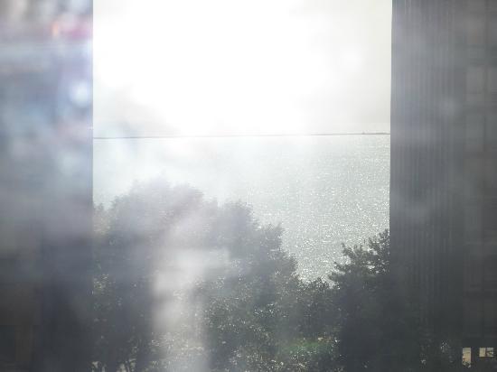 DeWitt Place: vue