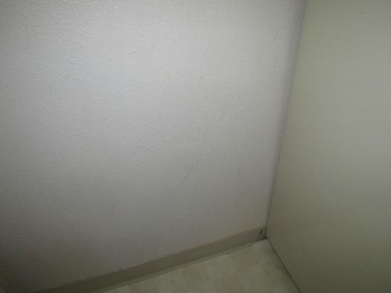 سوتون سويتس آند إكستندد ستايز: wall 