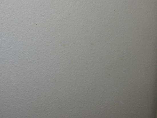 سوتون سويتس آند إكستندد ستايز: walls 