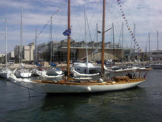 Hotel Les Brises : Boats in La Rochelle harbour