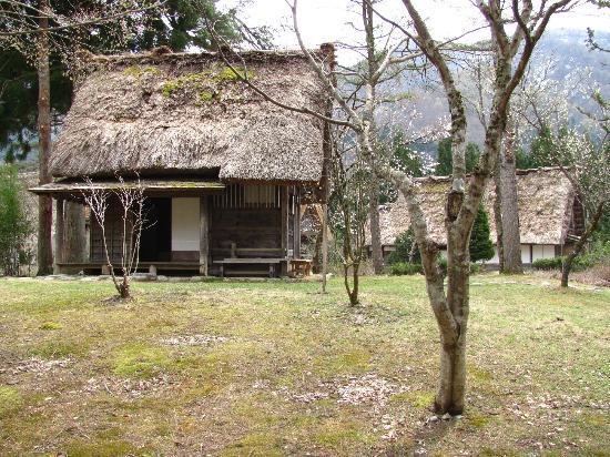 Shirakawago - Foto di Shirakawago Gassho Zukuri Minkaen, Shirakawa-mura - Tri...