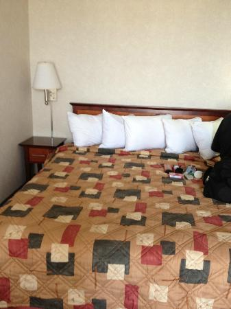 Anchorage Alaska Hotels With Bed Bugs