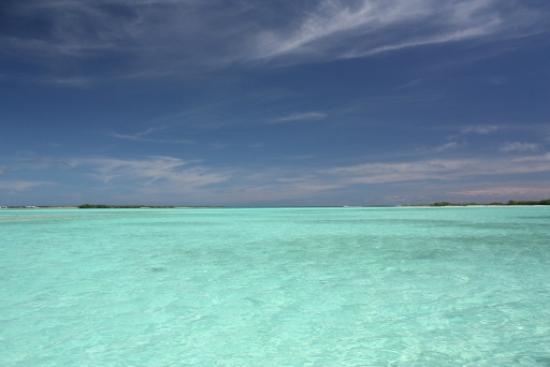 Posada Movida: La laguna delle stelle marine