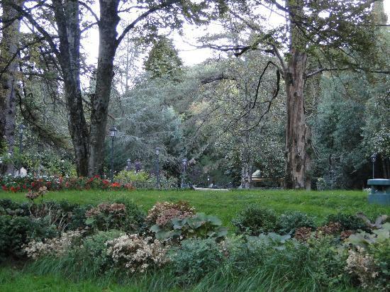 Castello dell'Oscano: Castle garden