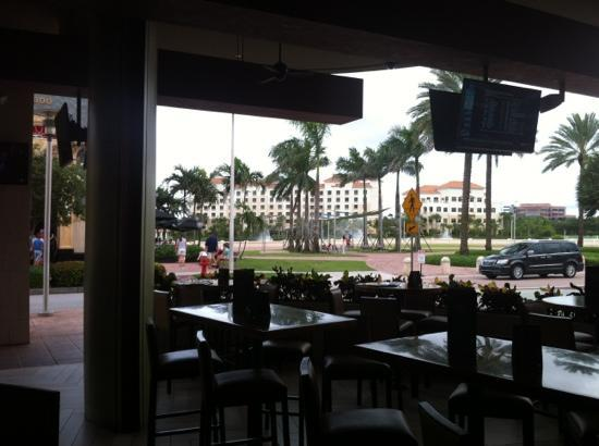 Hilton Garden Inn Palm Beach Gardens: view from the Dirty Martini across the street.