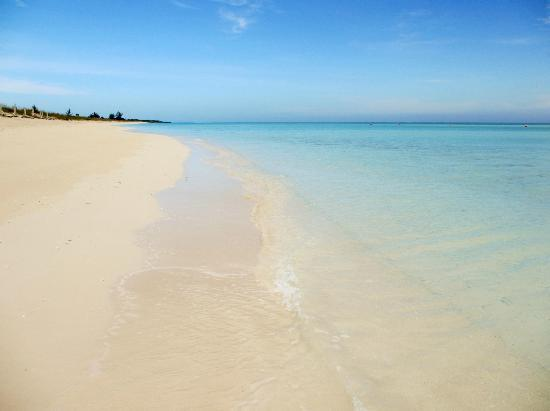 COMO Parrot Cay, Turks and Caicos: beautiful beach :-)