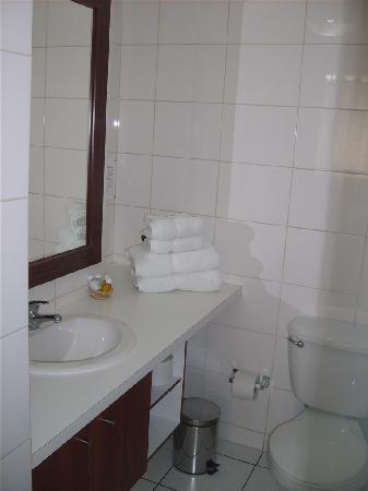 Chileapart.com: Baño