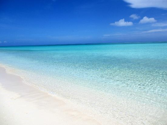 Parrot Cay by COMO: perfect blue water