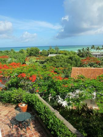 Parrot Cay by COMO: view of hotel grounds from the main building