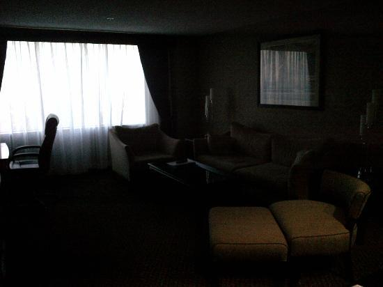 Hilton Houston Plaza/Medical Center : A view of the living room area from the powder room