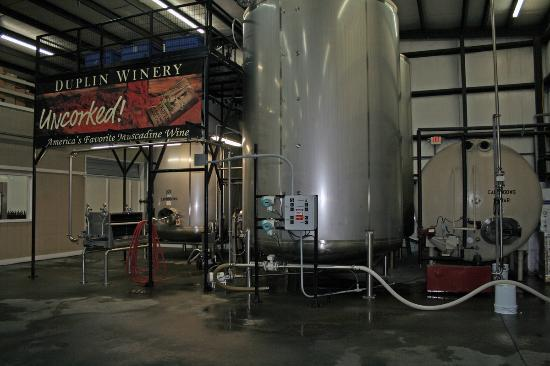 Duplin Winery: Wine vats
