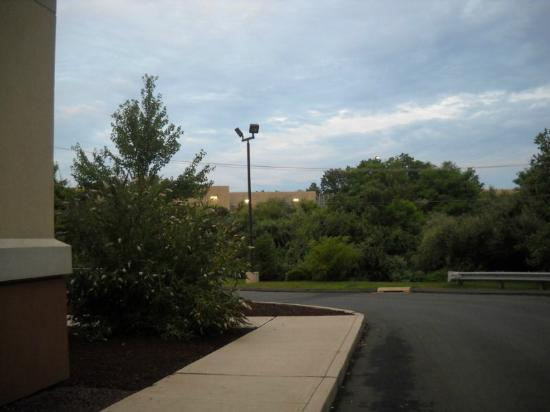 Comfort Suites Southington - Cheshire: wooded area on side