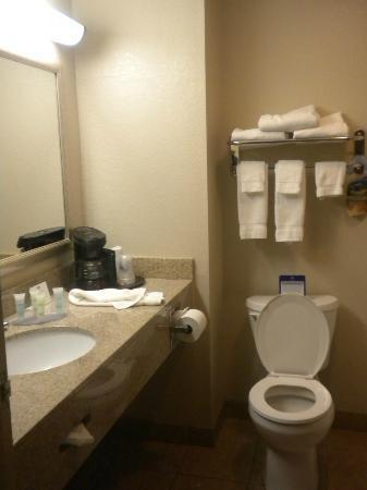 BEST WESTERN Auburndale Inn & Suites: Bathroom