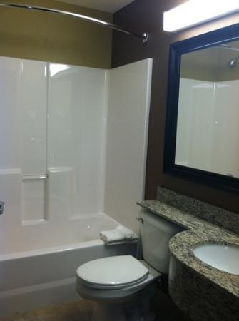 Microtel Inn & Suites by Wyndham Kalamazoo: Bathrooms are nice.
