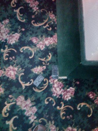Comfort Inn & Suites : More Duct Tape on Capret