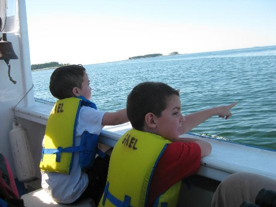 Guided Island Tours Day Tours : Grandsons loved boat tour with Capt. Walt!