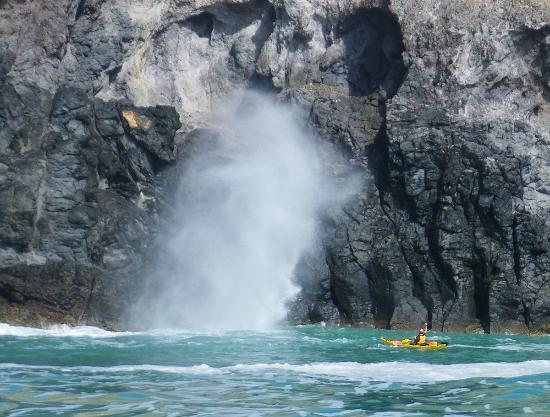 Banks Peninsula: A blowhole, between Pt Levy and Pigeon Bay.