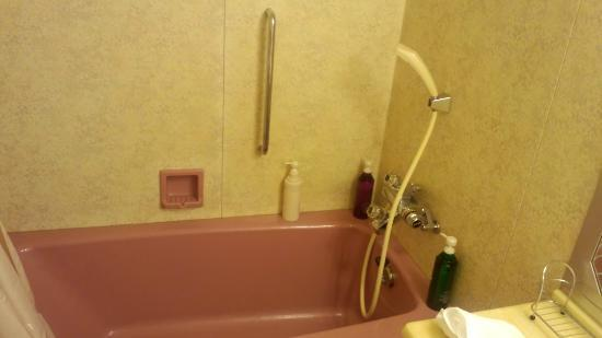 Lake Biwa Marriott Hotel: バスルーム