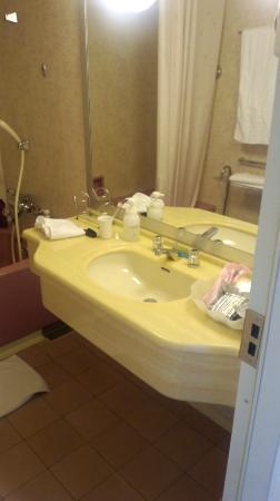 Lake Biwa Marriott Hotel: 洗面台