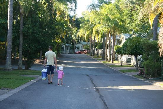 Ashmore Palms Holiday Village: Walking to the pool