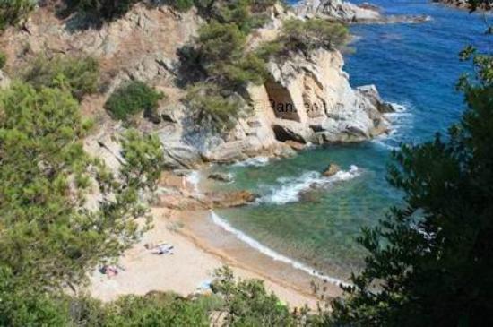 Camping Cala Llevado: Platja Cala Llevado
