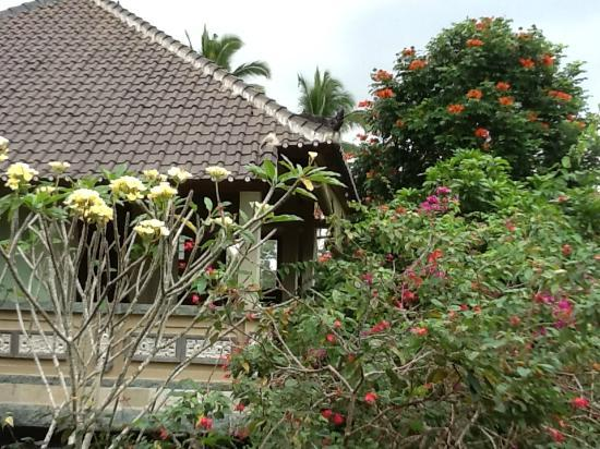 Pondok Permata Homestay: vue01