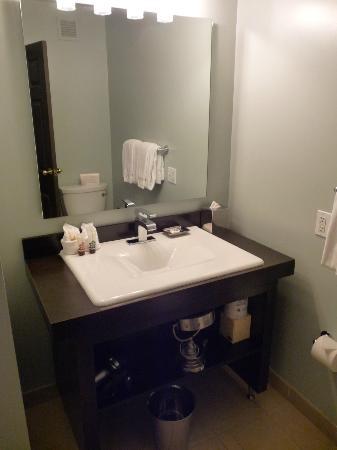 Magnolia Hotel Denver: Bagno