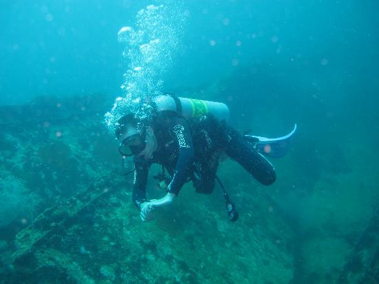 มาลาปาสคัวเอโซติคไอซ์แลนด์ไดฟ์แอนด์บีชรีสอร์ท: Dona Marilyn (33 metres)