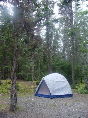 Seawall Campground: Tent site B1