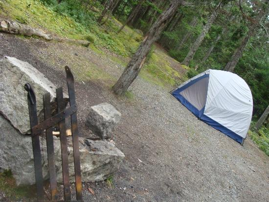 Seawall Campground 사진