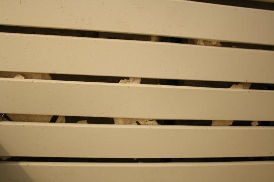 Akdeniz Apart Hotel: controsoffitto che nasconde i calcinacci caduti
