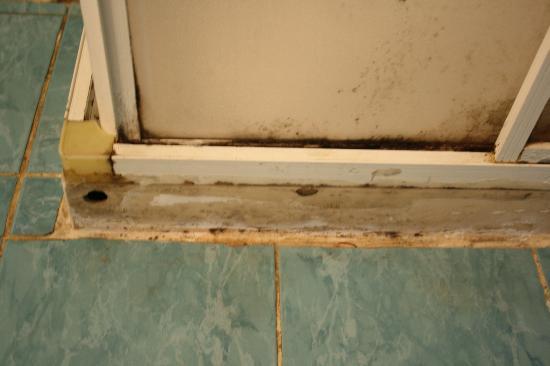 Akdeniz Apart Hotel: box doccia e piastrelle del bagno