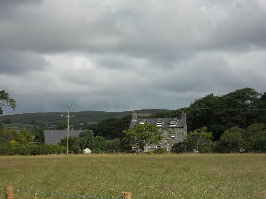 Tyn-Yr-Eithin Bed and Breakfast : View from the road