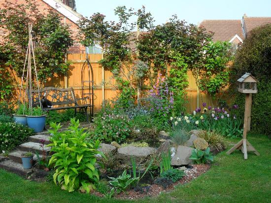 Pearfield Bed and Breakfast: Back garden