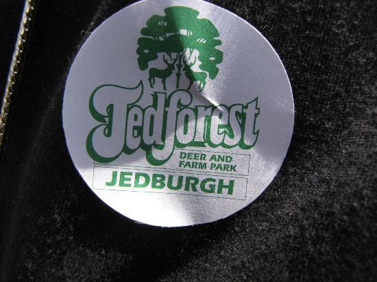 Jedforest Deer & Farm Park: Your entry badge