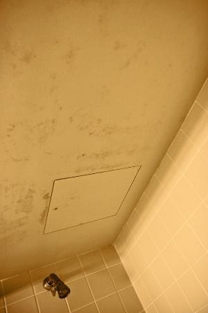 Flintstone, MD: Bathroom Ceiling