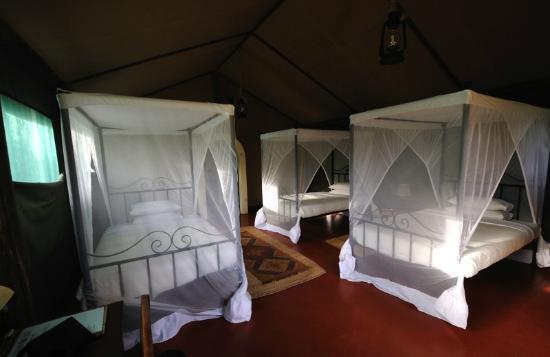 Kirurumu Tarangire Lodge: chambre
