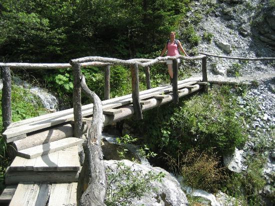 Walking Trails: Crossing a bridge on the way down