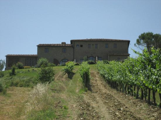 Borgo Tollena: The villa and vineyard