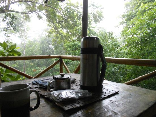 Tree Houses Hotel Costa Rica: The coffee that magically appeared each morning!