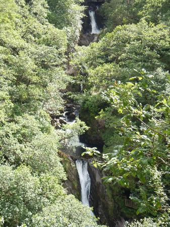 Devil's Bridge Falls: The actual falls - vegetation could do with cutting back - hard though!