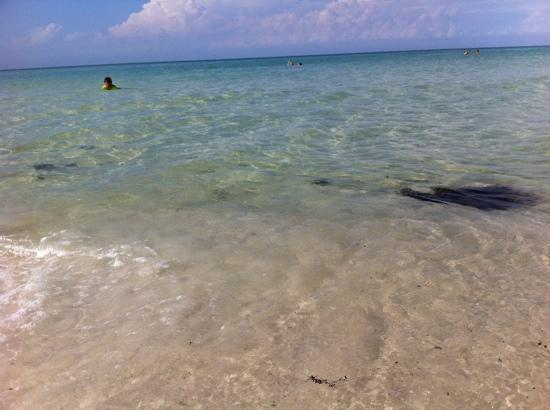 Hampton Inn & Suites Destin-Sandestin: beach near hotel