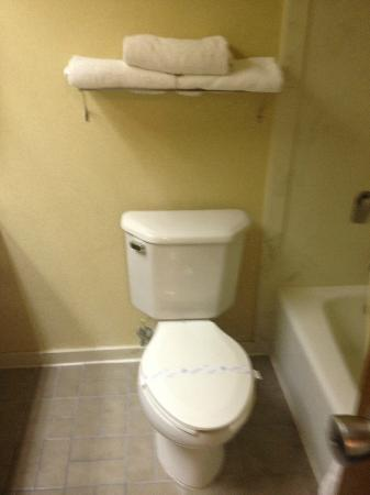 Best Western Greenwood: there was no toilet paper holder for the roll of toilet paper