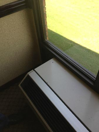 BEST WESTERN Greenwood : dead flies and droppings on the A/C unit outside our door