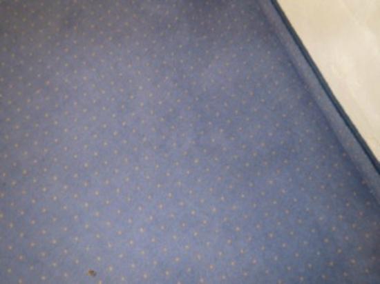 Teppich nach 4 Tagen nicht putzen  Foto di Hotel Lago Di