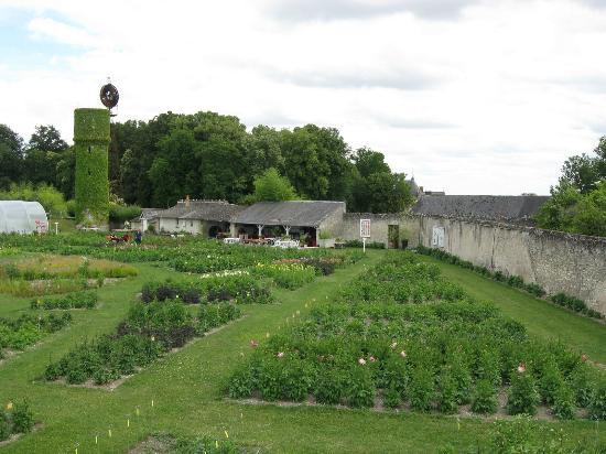 Gardens of the Chateau de la Bourdaisiere: Main gardens