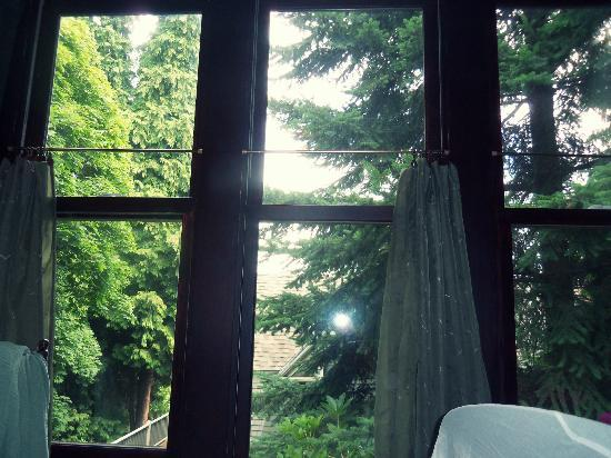 Bellaterra Bed and Breakfast: The Woodland Room (beautiful view)