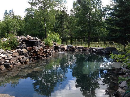 Le Grenier des Cousins: Amazing natural pool