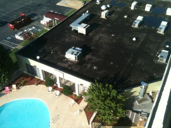 Clarion Hotel at Carowinds: yet another lovely view